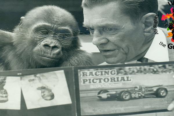 Ivan the Gorilla® & Earl Irwin