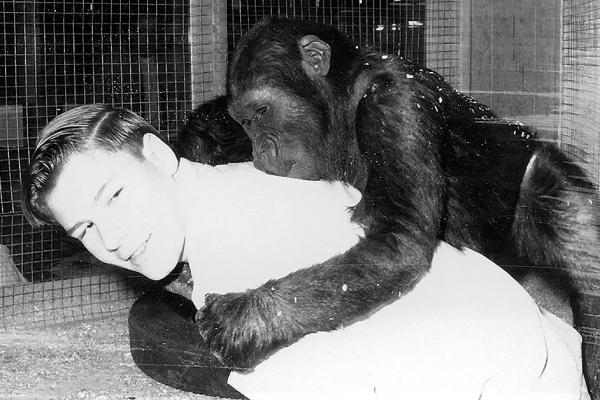 Ivan the Gorilla® on Larry's backl